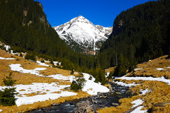 Mountain view. The view of the mountains in spring Royalty Free Stock Photography