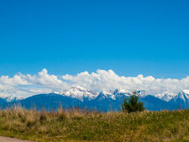 Mountain View from the National Bison Refuge Royalty Free Stock Images