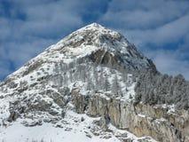 Mountain View nevado Foto de Stock