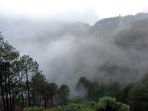 Mountain View nevoento Fotografia de Stock Royalty Free