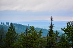 Mountain view. Over forest in cloudy day Stock Photo