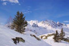 Mountain View panoramico della neve Fotografia Stock Libera da Diritti