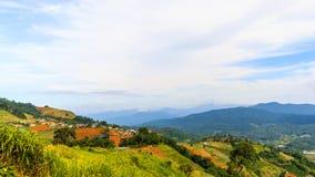 Mountain View pendant le matin au chaingmai Thaïlande Image libre de droits