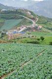 Mountain View a Phu Thap Boek Fotografie Stock Libere da Diritti