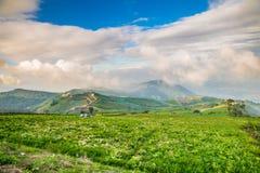 Mountain view at Phu Thap Boek, Thailand Royalty Free Stock Photos