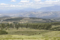 Mountain View pittoresque latino-américain Photo stock