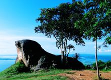 Rock shaped like sea lion / sky background/ At the view point Royalty Free Stock Photos