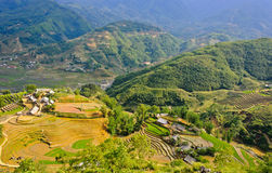 Mountain view of rice terraced fields Stock Image