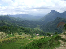 Mountain view and rice terraces of Tana Toraja Stock Image
