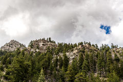 Mountain View rocciosi della foresta nazionale di San isabel in colorado Immagini Stock