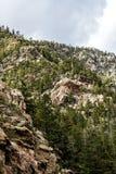 Mountain View rocciosi della foresta nazionale di San isabel in colorado Fotografia Stock Libera da Diritti