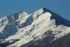 Mountain View roccioso 2 Immagini Stock Libere da Diritti