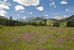 Mountain View rochoso Fotografia de Stock Royalty Free