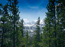 Mountain View in Rocky Mountain National Park Stock Images