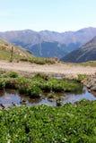 Mountain View rocoso Imagenes de archivo
