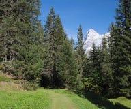 Mountain View spettacolari vicino alla città di Murren (Berner Oberland, Svizzera) Fotografia Stock Libera da Diritti