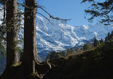 Mountain View spettacolari vicino alla città di Murren (Berner Oberland, Svizzera) Fotografie Stock Libere da Diritti