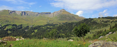Mountain view in Switzerland Grindelwald valley, plateau, high Royalty Free Stock Photos