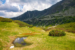 Mountain view in Tatras on a bright day Stock Image