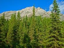 Mountain View Stock Photos