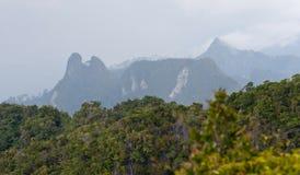 Mountain View tropicale Immagini Stock Libere da Diritti
