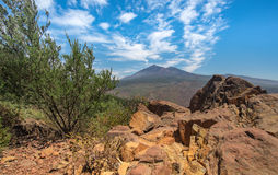 Mountain view on the volcano teide Stock Images