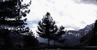 Mountain View 9 zdjęcia stock