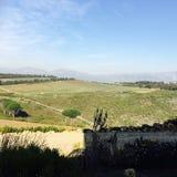 Mountain. View Winefarm vineyard blue royalty free stock photography