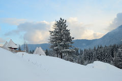 Mountain view in winter, cabins and pine trees under snow Stock Photos