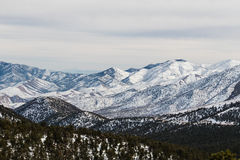 Mountain view. Winter landscape with mountain view in Mount Charleston, Nevada Royalty Free Stock Images