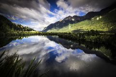 Mountain views, streams and lakes of New Zealand d.y. Mountain views, streams and lakes and plants of New Zealand d.y Stock Image