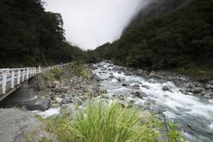 Mountain views, streams and lakes of New Zealand d.y. Mountain views, streams and lakes and plants of New Zealand d.y Stock Photo