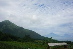 mountain views and tomato gardens stock photography