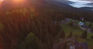 Mountain village among coniferous forests in the mountains during sunset, aerial shooting. Rural houses on a clearing among a coniferous forest in the mountains stock video footage