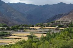 Mountain village, among the high brown rocks lie fields with yellow wheat, many green trees and small peasant houses, August in Hi Royalty Free Stock Photos