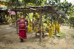 MOUNTAIN VILLAGE, NEPAL - NOVEMBER 21, 2014: Woman selling fresh Royalty Free Stock Images