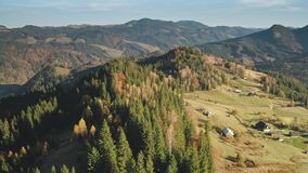 Mountain village at pine forest aerial. Nobody nature landscape. Colorful autumn leaf, conifer trees