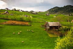 Mountain village in Romania landscape Stock Photos