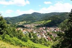Mountain Village, Vegetation, Mountainous Landforms, Hill Station