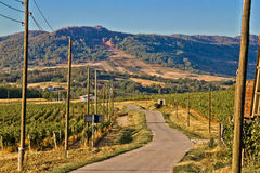 Mountain vineyard region scenic road Royalty Free Stock Image