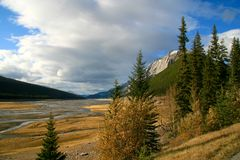 Mountain Vista. In Jasper National Park, Alberta Canada Royalty Free Stock Photos
