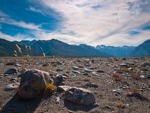Mountain vista. At Arthur's pass national park, New Zealand Stock Photo