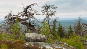 Mountain Vottovaara Royalty Free Stock Photography