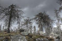Mountain vuottovaara, Karelia, Russia Royalty Free Stock Image