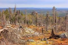 Mountain vuottovaara, Karelia, Russia Stock Photo