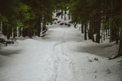 Mountain Walkpath, winter scene Stock Photos