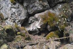 Mountain wall of stone Stock Photos