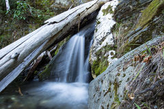 Mountain Water fall. Water flowing out from under a log, cascades over a rock and into a clear pool Stock Photos