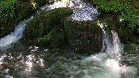 Mountain water stream stock video