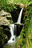 Mountain waterfall. Surrounded by trees and moss Royalty Free Stock Photography